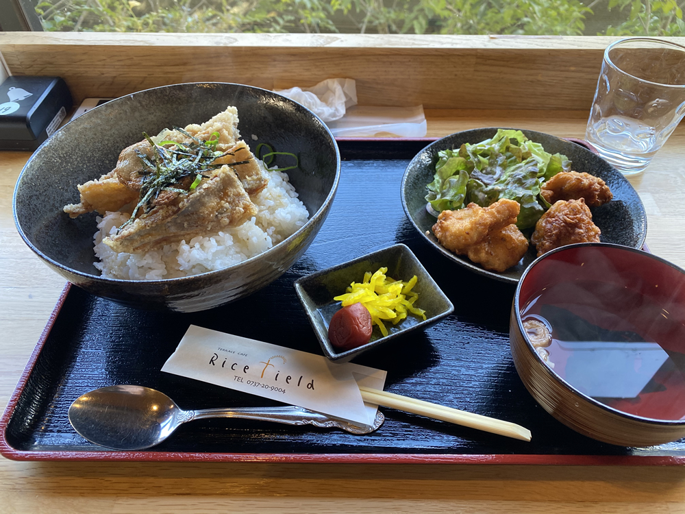 選べる!ミニ郷土丼セット