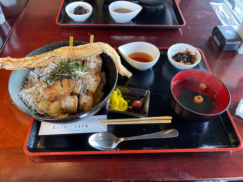 紀州みのしま丼定食